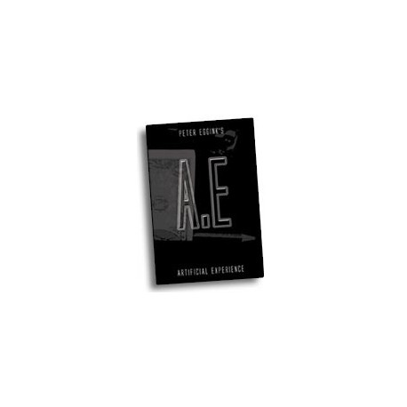 A.E. by Peter Eggink book